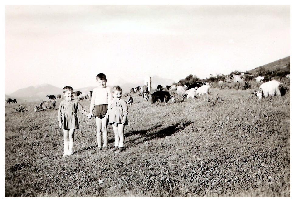 1959 Galeria 1